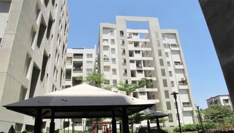 1669 sqft, 3 bhk Apartment in Pate Kimaya Bibwewadi, Pune at Rs. 1.5000 Cr