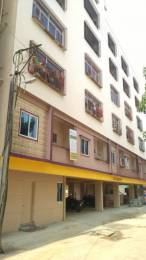 500 sqft, 1 bhk BuilderFloor in Builder Apple Residency Electronic City Phase 1, Bangalore at Rs. 11000