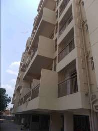 1100 sqft, 2 bhk Apartment in Synergy Flora Casa Jule, Solapur at Rs. 10500