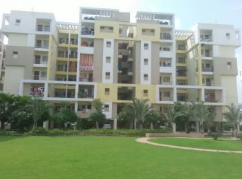 1087 sqft, 3 bhk Apartment in Builder Project Katara Hills Road, Bhopal at Rs. 19.5000 Lacs
