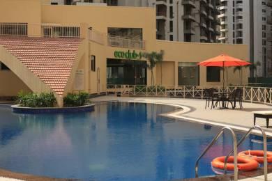 1209 sqft, 3 bhk Apartment in PAN Realtors Pvt. Ltd. Amrapali PAN Oasis Apartments Sector 70, Noida at Rs. 14000