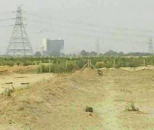 1350 sqft, Plot in Builder Vatika city Sector 137, Noida at Rs. 4.5000 Lacs