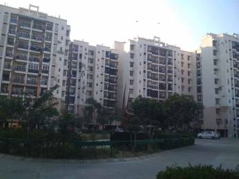 1165 sqft, 2 bhk Apartment in Builder Omaxe North Avenue I Sector 15 omaxe city, Bahadurgarh at Rs. 36.0000 Lacs