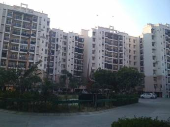 1165 sqft, 2 bhk Apartment in Builder Omaxe North Avenue I Sector 15 omaxe city, Bahadurgarh at Rs. 30.0000 Lacs