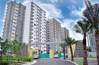 1521 sqft, 2 bhk Apartment in Builder Tata New Haven Sector 37, Bahadurgarh at Rs. 68.0000 Lacs