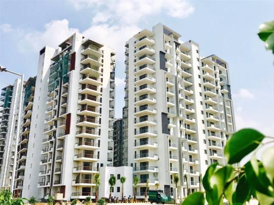 1307 sqft, 2 bhk Apartment in Godrej Oasis Sector 88A, Gurgaon at Rs. 77.0000 Lacs