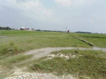 1000 sqft, Plot in Builder Chandrank kashiyana Ramnagar Road, Varanasi at Rs. 5.0000 Lacs