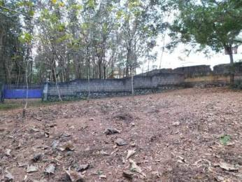 6453 sqft, Plot in Builder Project Kattakada Ottasekharamangalam Road, Trivandrum at Rs. 30.0000 Lacs