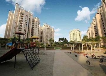 1805 sqft, 2 bhk Apartment in Orchid Petals Sector 49, Gurgaon at Rs. 35000