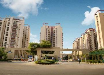 1805 sqft, 3 bhk Apartment in Orchid Petals Sector 49, Gurgaon at Rs. 35000