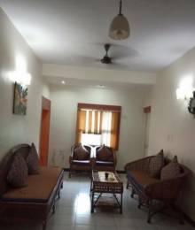 1000 sqft, 2 bhk Apartment in Builder shahpura sectora Shahpura, Bhopal at Rs. 19000