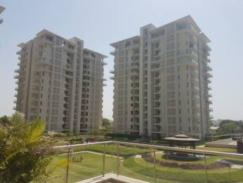 2000 sqft, 3 bhk Apartment in Shalimar Gallant Aliganj, Lucknow at Rs. 45000