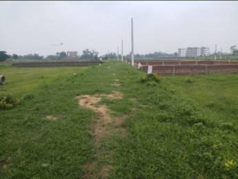750 sqft, Plot in Builder Wishluv Buildicon pvt ltd Chirora, Patna at Rs. 8.0000 Lacs