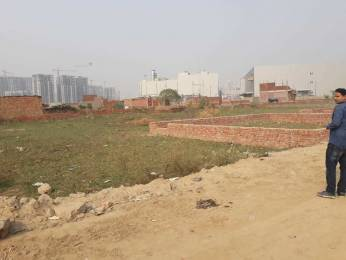 450 sqft, Plot in Future Home Metro Dream City Sector 79, Noida at Rs. 8.0000 Lacs