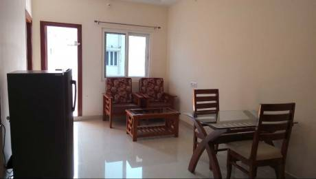 1000 sqft, 2 bhk Apartment in Builder Near d Mart Madhapur Madhapur, Hyderabad at Rs. 28000