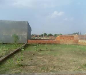 800 sqft, Plot in Builder Triveni Green Jhusi, Allahabad at Rs. 10.6600 Lacs