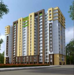 895 sqft, 2 bhk Apartment in Presidency Lifestyle Kankanady, Mangalore at Rs. 33.5625 Lacs