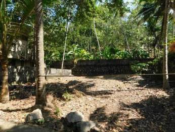 2196 sqft, Plot in Builder Project Mannanthala, Trivandrum at Rs. 17.5000 Lacs