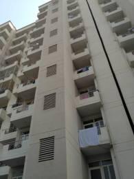 1600 sqft, 3 bhk Apartment in Avalon Gardens Sector 22 Bhiwadi, Bhiwadi at Rs. 32.0000 Lacs