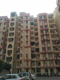 850 sqft, 2 bhk Apartment in Avalon Residency Phase I Sector 32 Bhiwadi, Bhiwadi at Rs. 15.5000 Lacs