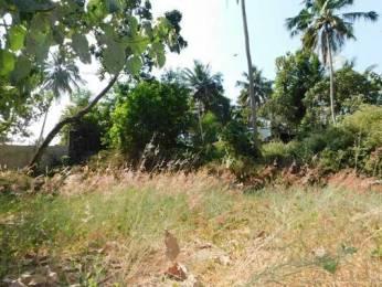 372 sqft, Plot in Builder Project Thonnakkal Vengode Malamukal Chempoor Road, Trivandrum at Rs. 45.0000 Lacs