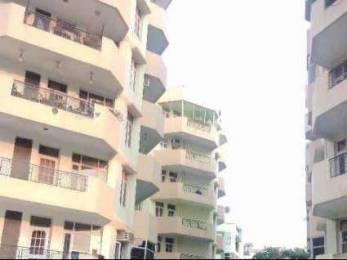 1650 sqft, 3 bhk Apartment in Builder 3BHK FLATS Sector 20, Panchkula at Rs. 20000