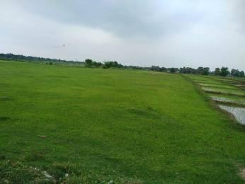 20000 sqft, Plot in Builder Project Naubatpur Bikram Road, Patna at Rs. 3.0000 Cr