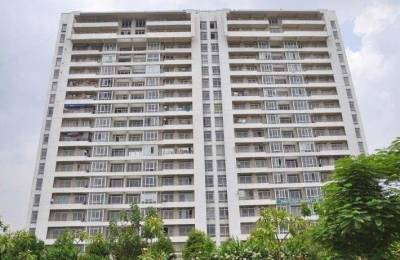 1675 sqft, 3 bhk Apartment in Jaypee Pavilion Heights Sector 128, Noida at Rs. 98.0000 Lacs