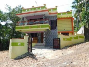 1750 sqft, 3 bhk IndependentHouse in Builder Project Peyad, Trivandrum at Rs. 50.0000 Lacs