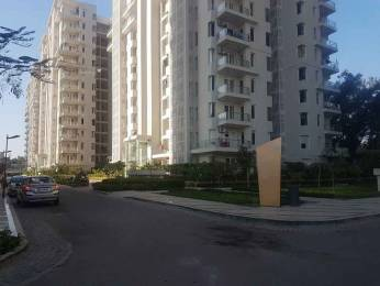 1500 sqft, 2 bhk Apartment in Shalimar Gallant Aliganj, Lucknow at Rs. 30000