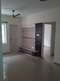 911 sqft, 2 bhk Apartment in Builder Project Kankanady, Mangalore at Rs. 13500