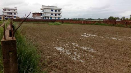 3802 sqft, Plot in Builder Project Darbhanga, Darbhanga at Rs. 54.0000 Lacs
