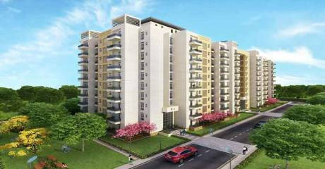 1450 sqft, 3 bhk Apartment in BPTP Park Elite Premium Sector 84, Faridabad at Rs. 48.0000 Lacs