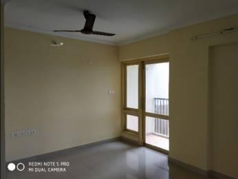 1250 sqft, 2 bhk Apartment in Builder Project Thrikkakara, Kochi at Rs. 12000