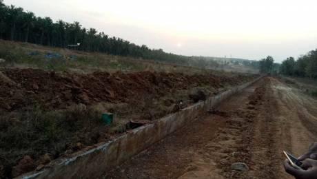 1200 sqft, Plot in Builder Nadaprabhu Kempegowda Layout Kengeri, Bangalore at Rs. 42.0000 Lacs