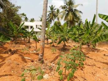 4518 sqft, Plot in Builder Project Vattiyoorkavu, Trivandrum at Rs. 82.9600 Lacs