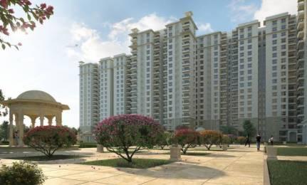1350 sqft, 2 bhk Apartment in Builder sobha rayal pavilionaa Sarjapur, Bangalore at Rs. 89.0000 Lacs