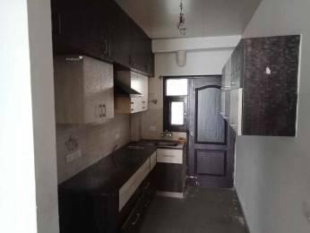 1515 sqft, 3 bhk Apartment in Omaxe Royal Residency Dad Village, Ludhiana at Rs. 22000