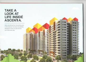 1591 sqft, 3 bhk Apartment in Builder Sterling ascentia q MarathahalliSarjapur Outer Ring Road, Bangalore at Rs. 1.1976 Cr
