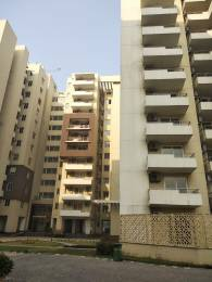 1165 sqft, 2 bhk Apartment in TDI Ourania Sector 53, Gurgaon at Rs. 42000