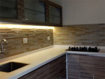 980 sqft, 2 bhk Apartment in Builder Project Vazhakkala, Kochi at Rs. 65.0000 Lacs