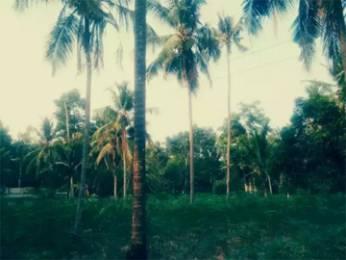 43560 sqft, Plot in Builder Project Vaikom, Kottayam at Rs. 1.7500 Cr