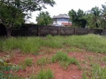 4796 sqft, Plot in Builder Project Maradu, Kochi at Rs. 71.5000 Lacs