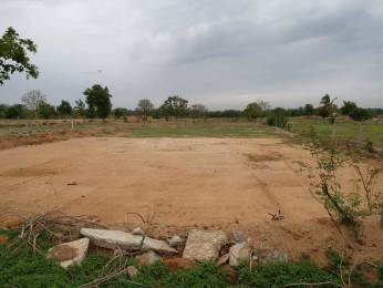 900 sqft, Plot in Builder Project muthangi, Hyderabad at Rs. 23.0000 Lacs