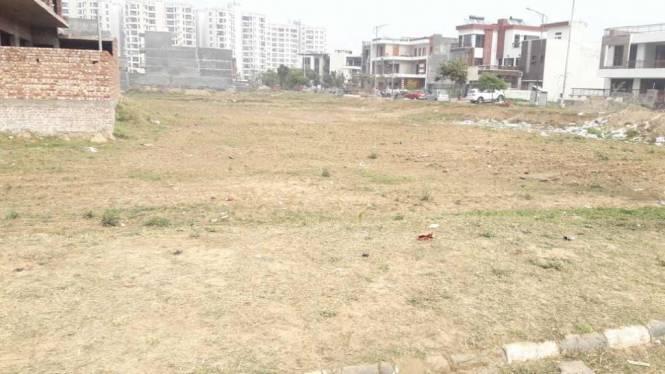 4500 sqft, Plot in TDI Villas Sector 117 Mohali, Mohali at Rs. 1.4800 Cr