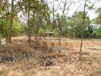10890 sqft, Plot in Builder Project Vattiyoorkavu, Trivandrum at Rs. 1.8750 Cr