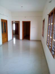 2500 sqft, 3 bhk Apartment in Builder Project Nungambakkam, Chennai at Rs. 23000