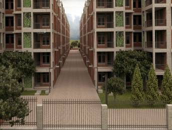 488 sqft, 1 bhk Apartment in Arete Our Homes 3 Sector 6 Sohna, Gurgaon at Rs. 12.5500 Lacs