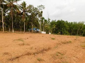 8712 sqft, Plot in Builder Project Pravachambalam Ooruttambalam Road, Trivandrum at Rs. 60.0000 Lacs