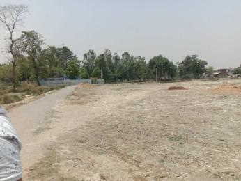 1000 sqft, Plot in Builder madhuban city Naubatpur Bikram Road, Patna at Rs. 11.0000 Lacs